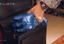 """Giải trí - Sinh tử tập 11: Vũ cao tay gửi """"quà mọn"""" vào túi của cảnh sát Thông"""