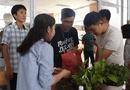 Việc tốt quanh ta - TP.HCM: Nhóm bạn trẻ gom chai nhựa, tặng ngàn cây xanh bảo vệ môi trường