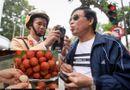 Tin trong nước - Bộ GTVT: Không có chuyện người dân chỉ ăn hoa quả có nồng độ cồn mà bị xử phạt