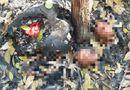 An ninh - Hình sự - Vụ 9 bộ xương người ở Tây Ninh: Bán bộ xương cốt với giá 100 triệu đồng