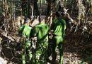 An ninh - Hình sự - Rùng mình phát hiện 2 bộ xương người trong vali ở lô cao su tại Tây Ninh
