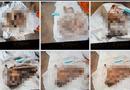 Pháp luật - Vì sao không khởi tố vụ phát hiện 9 bộ xương người tại Tây Ninh?