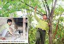 Tin trong nước - Tết không trọn vẹn của người gác rừng trên đỉnh Trường Sơn