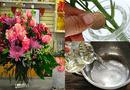 Ăn - Chơi - Bí quyết để giữ hoa luôn tươi trong ngày Tết