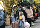 Việc tốt quanh ta - Hàng ngàn sinh viên về quê đón Tết trên chuyến xe miễn phí