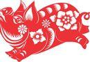 Ăn - Chơi - Tử vi đầy đủ cho người tuổi Hợi năm Canh Tý 2020