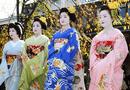 Đời sống - Phong tục ăn Tết truyền thống của người Nhật Bản