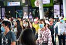 Tin trong nước - Tài xế, hành khách đi xe cần đeo khẩu trang, rửa tay bằng dung dịch sát khuẩn chống dịch bệnh do virus corona
