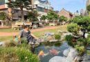 Ăn - Chơi - Chiêm ngưỡng vườn cảnh triệu đô của đại gia Hà Thành từng bán nhà để mua cây