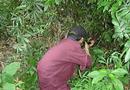 Tin trong nước - Bình Định: Đi săn thú rừng, người đàn ông chết thảm bên cạnh khẩu súng độ chế