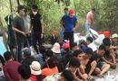 """Pháp luật - Đồng Nai: Đột kích sòng bạc giữa rừng tràm, bắt nóng trùm cờ bạc Tình """"số"""""""