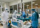Tin trong nước - Người bác lây Covid-19 từ bệnh nhân số 17 phải can thiệp tim phổi nhân tạo
