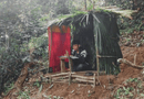 Đời sống - Xúc động hình ảnh nam sinh dùng lá dựng lán giữa đồi để học trực tuyến