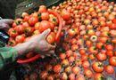 """Ăn - Chơi - 10 loại rau quả """"ngậm"""" nhiều hóa chất, ăn vào chả khác nào """"mở cửa"""" đón ung thư"""