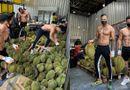Cộng đồng mạng - Chị em mê mệt với dàn mỹ nam thể hình bán sầu riêng ở Thái Lan