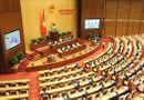 Tin trong nước - Kỳ họp thứ 9, Quốc hội khóa XIV: Có nên xây dựng riêng một luật cho hộ kinh doanh