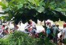 Tin trong nước - Bàng hoàng phát hiện nam thanh niên tử vong sau tiếng động lớn trong nhà vệ sinh