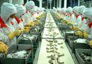 Kinh doanh - Hà Nội thí điểm ký quỹ 100 triệu đồng đối với người lao động đi làm việc tại Hàn Quốc