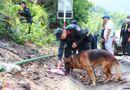 An ninh - Hình sự - Vụ phạm nhân Triệu Quân Sự trốn trại lần 2 : Bác tin chó nghiệp vụ hy sinh khi làm nhiệm vụ