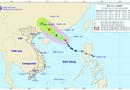 Tin trong nước - Bão số 1 đang mạnh lên ở Biển Đông, khẩn trương hướng dẫn thuyền bè tránh bão