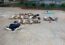 An ninh - Hình sự - Tin mới nhất vụ đôi nam nữ cầm đầu đường dây tẩm chất độc xyanua vào cá khô khiến chó mèo chết la liệt
