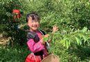 """Cộng đồng mạng - Cô bé 6 tuổi nói tiếng Anh như người bản ngữ, các mẹ """"phát sốt"""" vì tài năng của """"con nhà người ta"""""""
