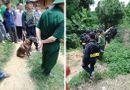 An ninh - Hình sự - Huy động chó nghiệp vụ truy bắt nghi phạm sát hại hàng xóm ở Sơn La