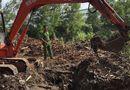 Pháp luật - Thu gom hơn 13 tấn chất thải công nghiệp chưa qua xử lý trong khu vực công ty Đài Loan