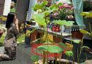Giải trí - Sau ồn ào liên quan đến đường dây bán dâm, Jolie Nguyễn gây chú ý với gương mặt tiều tụy