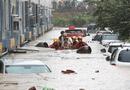 Tin thế giới - Mưa lũ nghiêm trọng nhấn chìm hàng trăm nhà cửa và ô tô ở Hàn Quốc