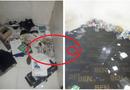"""Chuyện học đường - """"Bóc phốt"""" nữ sinh Hà Nội biến nhà trọ thành bãi rác kinh hoàng, chủ nhà trọ bị """"soi"""" ra điểm bất hợp lý"""