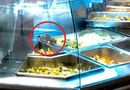 Kinh doanh - Chuột bò trong quầy ẩm thực, AEON Việt Nam nói gì?