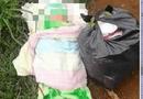 An ninh - Hình sự - Điều tra vụ bé sơ sinh bị bỏ rơi, tử vong bên trong thùng carton kèm lá thư viết vội