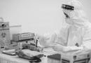 Tin trong nước - Băn khoăn test nhanh Covid-19 không chính xác, Phó Giáo sư đầu ngành y lên tiếng