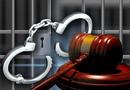 Pháp luật - Nữ trưởng phòng ngân hàngchiếm đoạt 8,2 tỷ đồng của khách hàng lĩnh 12 năm tù
