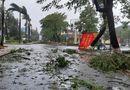 Tin trong nước - Cận cảnh sức phá hoại khủng khiếp của bão số 9 đổ bộ vào Quảng Ngãi: Cây xa la liệt đổ, thổi bay mái tôn