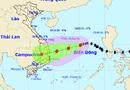 Tin trong nước - Chuyên gia nhận định bão số 10: Có thể thay đổi tính chất nhanh, gây mưa lớn