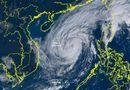 Tin trong nước - Tin bão số 13 khẩn cấp: Từ ngày 14/11, Hà Tĩnh - Quảng Nam có gió giật cấp 11