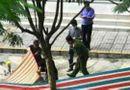 Tin trong nước - Thông tin mới nhất vụ nữ luật sư rơi từ tầng 18 chung cư tử vong