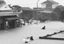 Tin tức - Nhiều khó khăn bủa vây người dân sau lũ