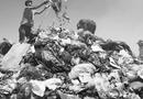 Đời sống - Chai nhựa, túi nilon: Một lần dùng, ngàn năm di hại