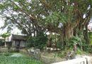 Chuyện học đường - Làng Cổ Am: Quê hương của Trạng Trình Nguyễn Bỉnh Khiêm, nơi trọng người có học hơn kẻ giàu sang