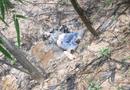 Tin trong nước - Vụ thi thể đang phân hủy trong rừng tràm: Cánh tay nạn nhân có nẹp vít