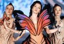 Tin tức giải trí - Tin tức giải trí mới nhất ngày 4/12: Chi Pu bị anti-fan tố hát nhép tại chương trình quốc tế