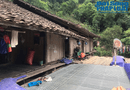 Gia đình - Tình yêu - Căn nhà sàn đơn sơ của bố mẹ chồng cô dâu Thu Sao ở quê nhà