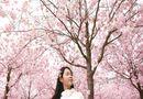 Sức khoẻ - Làm đẹp - Học 5 bí quyết giảm cân cực nhanh của phụ nữ Nhật, tự tin đón Tết