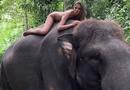 Chụp ảnh khoả thân cùng loài voi sắp tuyệt chủng, người mẫu 22 tuổi phải lên tiếng xin lỗi