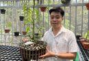Kinh doanh - Ông chủ vườn lan 8X Nguyễn Hữu Tân và mơ ước về một vườn lan trăm loài