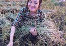 Chuyện làng sao - Bà Tưng về quê gặt lúa khiến cư dân mạng thích thú