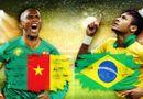 Bóng đá - Dự đoán tỷ số trận Brazil đấu với Cameroon 3h (24/6)